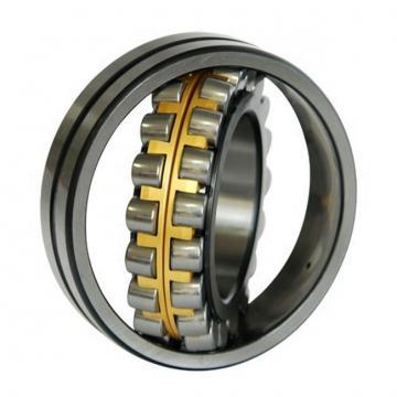 300 mm x 540 mm x 85 mm  KOYO NU260 Single-row cylindrical roller bearings